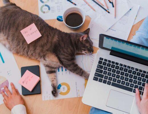 Controllo dipendente in smart working: cosa può fare un investigatore privato